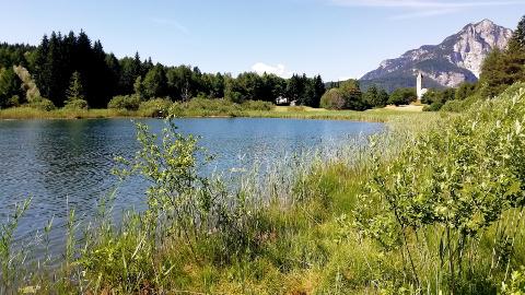 Video: «Badeseen: online die Daten zur Wasserqualität. G.News Production»