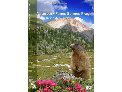 Video: «Naturpark Fanes-Sennes-Prags - Im Reich der Tiere»