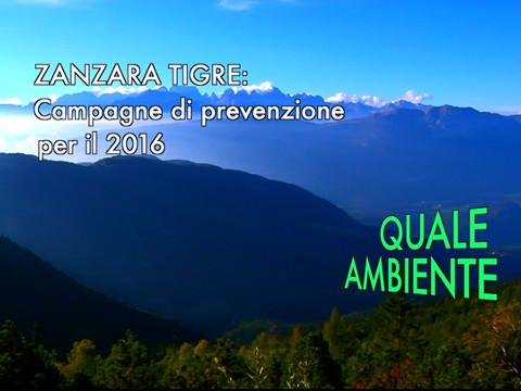 """Video: «Zanzara tigre: campagna di prevenzione 2016. Una trasmissione del ciclo """"Quale ambiente"""". BCool-Comunicare-Oltre Bolzano.»"""