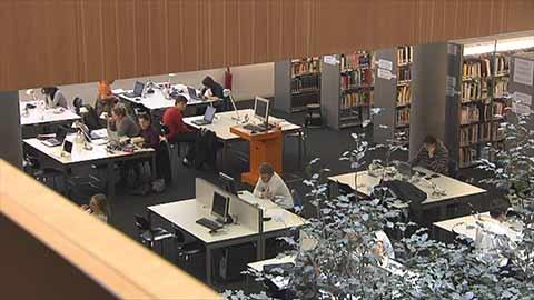 Video: «Le decisioni della Giunta Provinciale di Bolzano 12.02.2019»