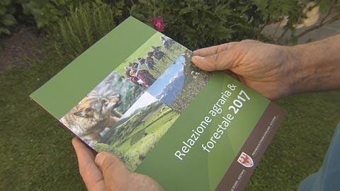 Video: «L'economia agroforestale in Alto Adige: un mondo raccontato nella relazione agraria e forestale 2017»