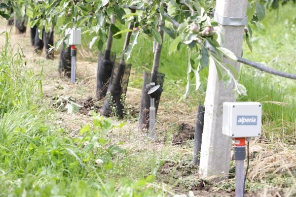 Video: «Smart Land Südtirol: innovatives Projekt für eine nachhaltige Entwicklung der Landwirtschaft»