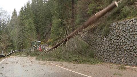 Video: «Unwetter in Südtirol: Jahrhundertereignis. Trauer um Feuerwehrmann»