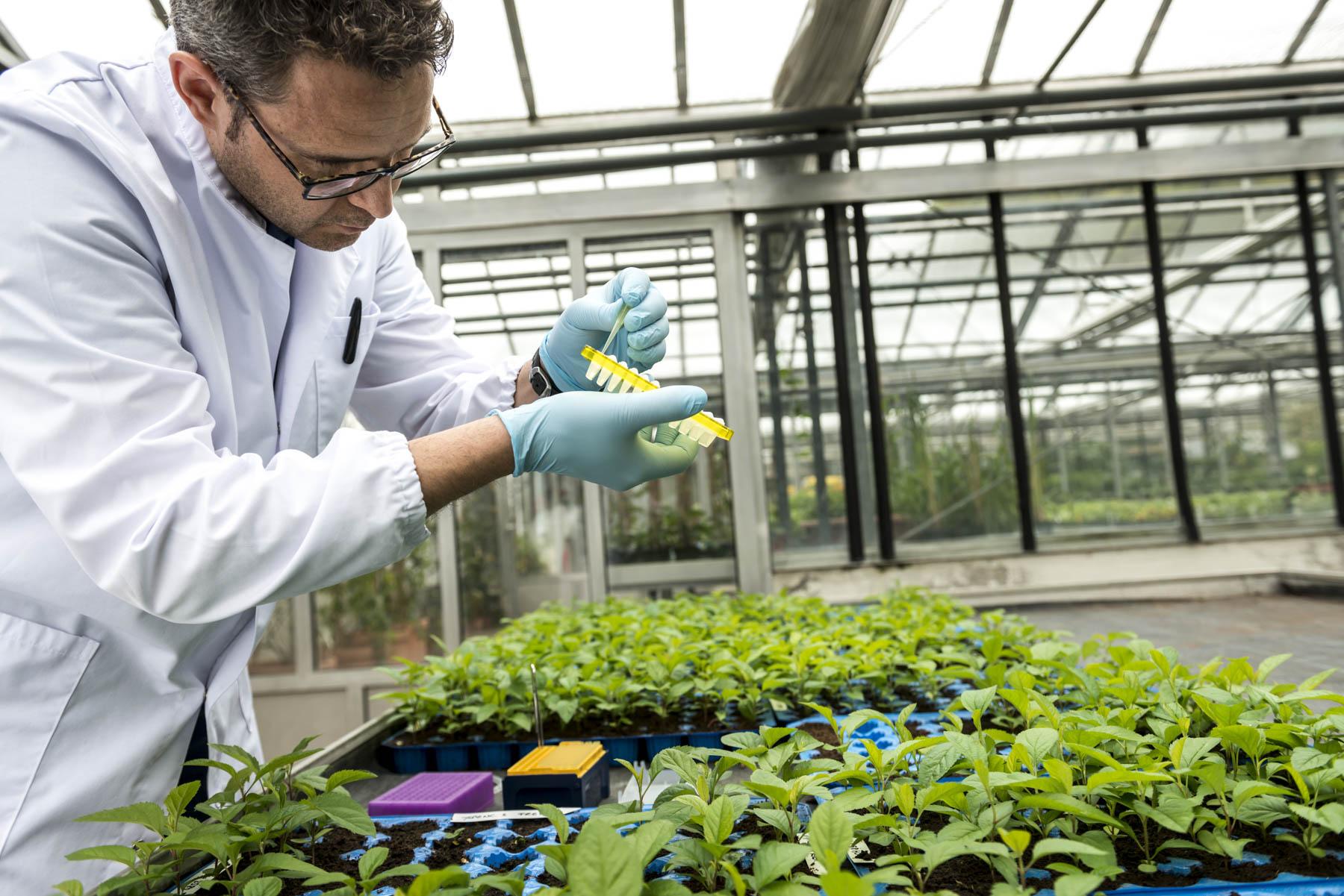 Video: «Forschung im Dienste der Landwirtschaft und der Verbraucher»