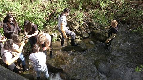 Video: «Projektpaket Umwelt.Schule: immer mehr Schülerinnen und Schüler beteiligt. GNews Production»