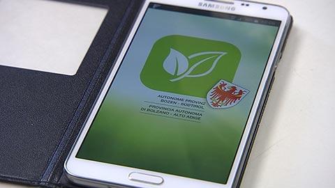 Video: «POLLEN-APP: neuer Info-Dienst für Allergiker»