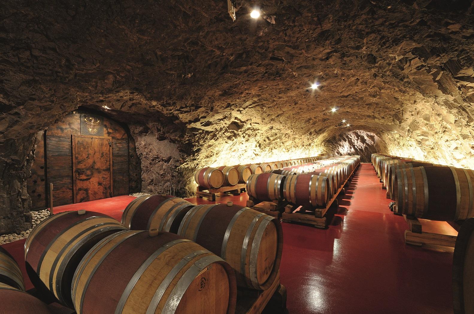 Video: «Die Verbreitung der Weinkultur am Versuchszentrum Laimburg»