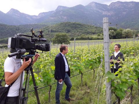 Video: «Das Projekt REBECKA - Forschung für den Weinbau der Zukunft»
